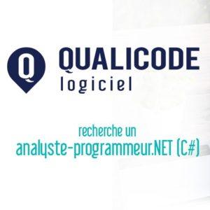 Offre d'emploi: Analyste-programmeur.NET (C#)
